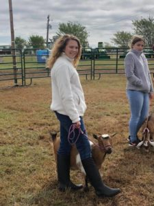 Sierra Dolengo showing her goat at the 4-H Goat Show at the Cape Fear Fair & Expo