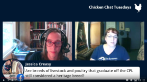 Facebook Live still shot of a Chikcen Chat Tuesday in August 2020